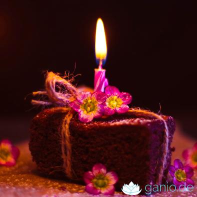 Schokokuchen-Schokoladenkuchen-veganer-Kuchen-backen-vegan-ganioQG660WKkkM2G2