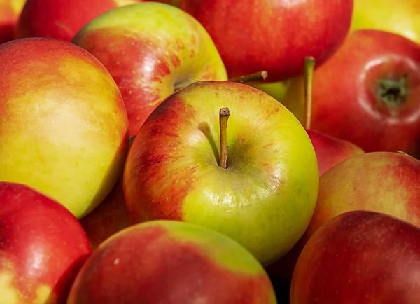 Frische rote Äpfel Elstar Braeburn 3 kg