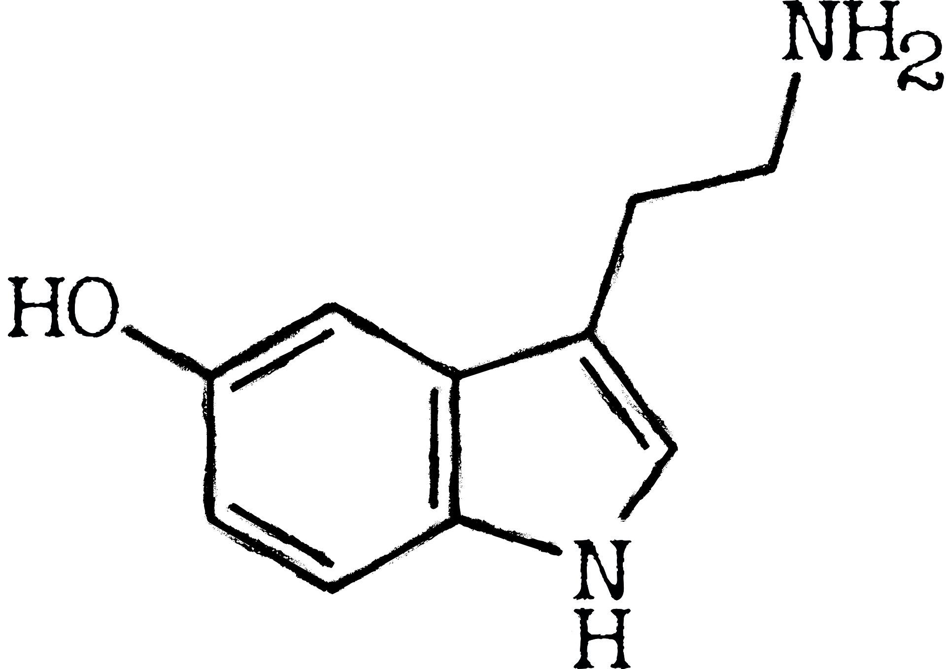 seratonin-3304364_1920