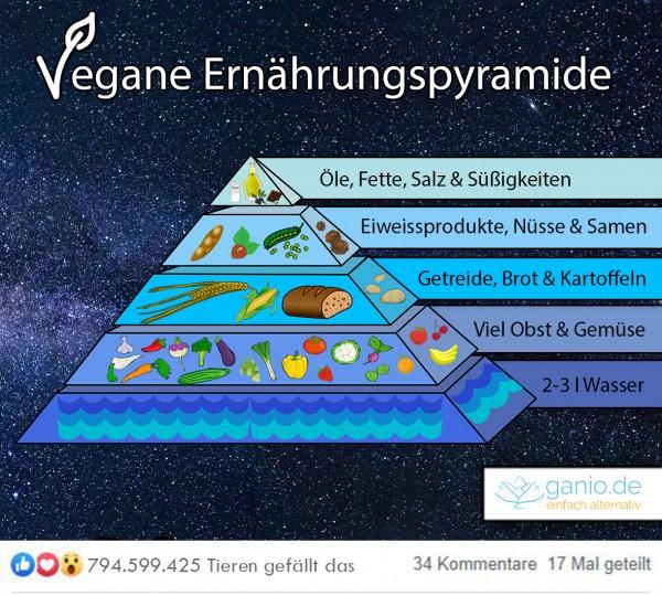 Vegane-Ern-hrungspyramide-Worauf-achten-veganer-Vegan-ern-hren-veganes-Leben-Pyramide-Ern-hrung